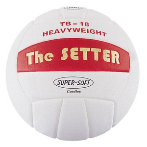 volleyball quotes for setters