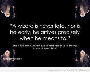 Funny Quotes about wizard