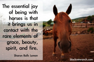 Horse Quotes and Cowgirl Quotes… with some Cowboy Quotes too