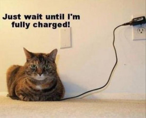 Just wait until I'm full charged