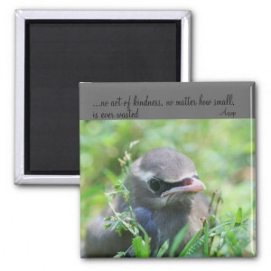 Baby Bird Kindness Quote Inspirational Magnet