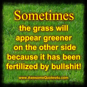Sometimes the grass will appear greener on the other side