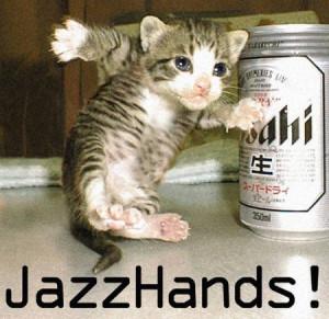 funny dancing cat funny dancing cat
