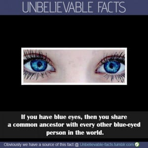 ... of the eye colour of all blue-eyed humans alive on the planet today