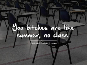 You bitches are like summer, no class Picture Quote #1