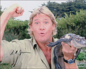 irwin founded the steve irwin conservation foundation which became an