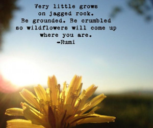 Very little grows on jagged rock. Be grounded. Be crumbled so ...