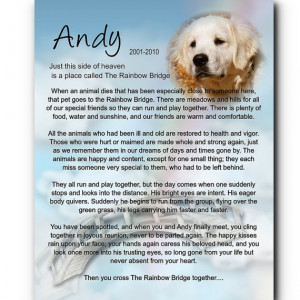 Sorry For Your Loss Pet Cat For dog, cat pet loss pet