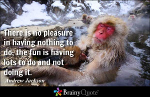There is no pleasure in having nothing to do; the fun is having lots ...