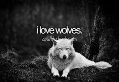 Grey Wolves Series