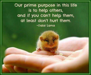 Our prime purpose in this life is to help others, And if you can't ...