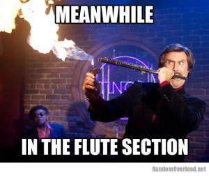 Flute section