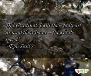 quotes about cardinals follow in order of popularity. Be sure to ...