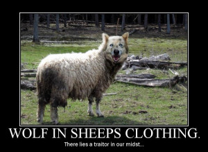 Wolves in Sheep 39 s Clothing Quotes