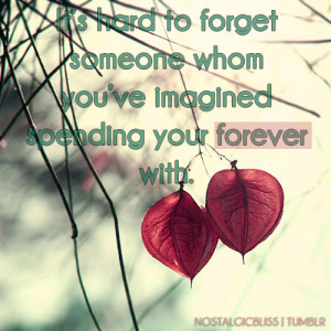 It's Hard To Forget Someone…