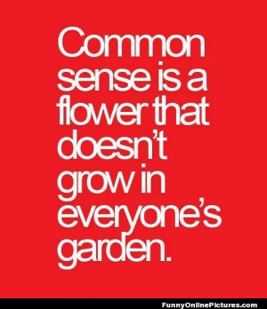 Funny quote about how some people just don't have much common sense!