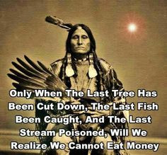 native american quotes, nativ american, american indians, eat money ...