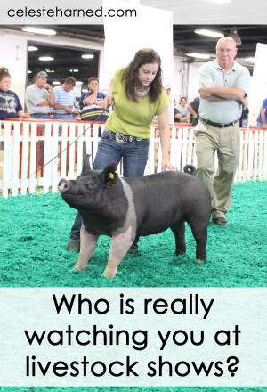 Livestock Show Girl Quotes At livestock shows.