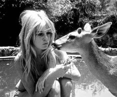 Brigitte Bardot Quotes