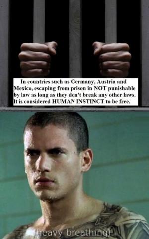 funny-prison-break-michael-scofield