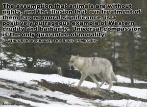 Animal Quotes, Part 6