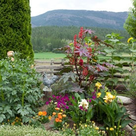 Green Tongues – Quotes about Gardening