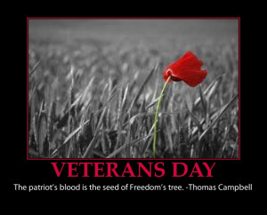veterans Day-poster-inspirational-beautiful-lest we forget