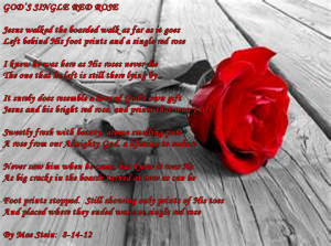 Related Pictures red rose poetry beautiful red rose wallpaper saying