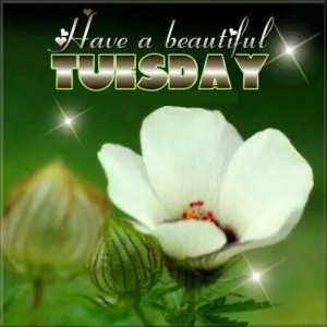 Have a beautiful Tuesday....