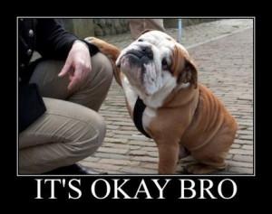 Big Dog cheering Up