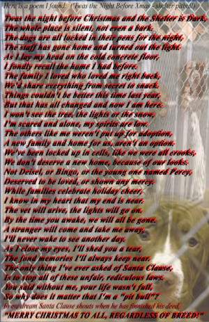 Pitbull Poems And Quotes Pictures Picture
