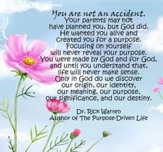 You are not an accident....~ Dr Rick Warren More