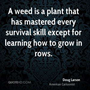 Quotes About Life And Weed