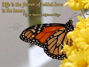 Flower Quotes About Life Flower quotes about life