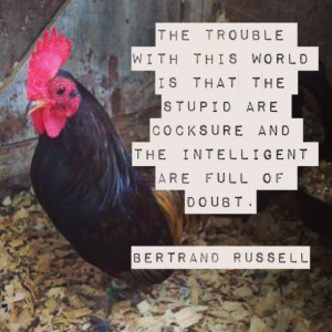 ... stupid-are-cocksure-bertrand-russell-daily-quotes-sayings-pictures.jpg
