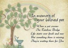 Pet loss sympathy card - Pet waits for you- memorial