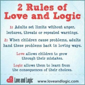 Love and logic approach