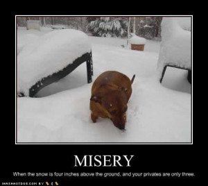 funny quotes about snow days