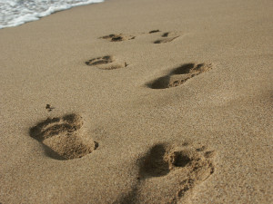 ... walks in the sand. I love to feel the sand between my toes and have