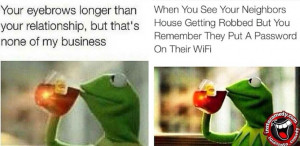 CHECKOUT the most Hillarious #NoneOfMyBusiness Meme by Kermit The Frog ...