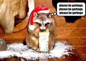 Description : funny raccoons,funny karen walker quotes,funny farewell ...