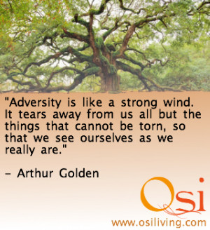 adversity-is-like-a-strong-wind-adversity-quote.jpg
