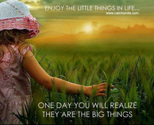 Enjoy the Little Things in Life One Day yOu will Realize they are the ...