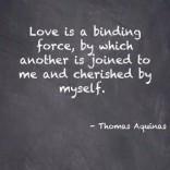 View bigger - Thomas Aquinas Quotes (FREE!) for Android screenshot