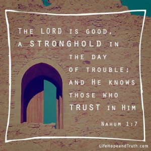 Encouraging Bible Verses About God's Protection