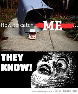Funny photos funny nutella trap bucket twig