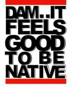Native Pride Quotes And Photo