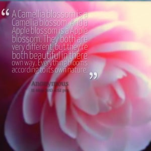 Quotes About Serenity In Nature Quotes picture: a camellia