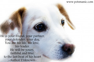 Love Quotes About Your Dog Dog Quotes Pets Manic Blog