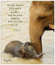 To the world you are a mother, but to your family you are the world ...